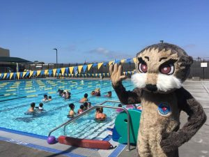 person in an otter costume in front of a pool.